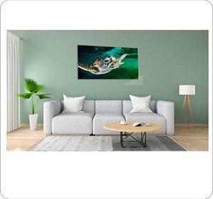 Quadro Decorativo Canvas Tartaruga 1