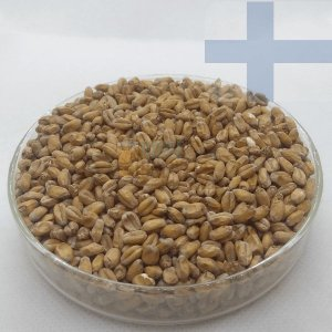 Malte Wheat (Trigo Claro) - Viking