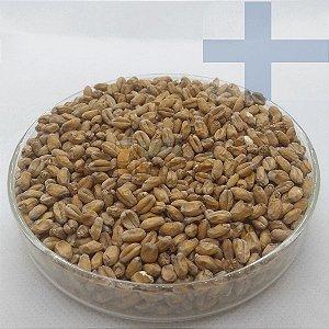 Malte Wheat (Trigo Claro) - Viking