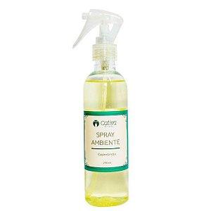 Spray para Ambiente Capim Limão Orgânico Natural – Cativa Natureza