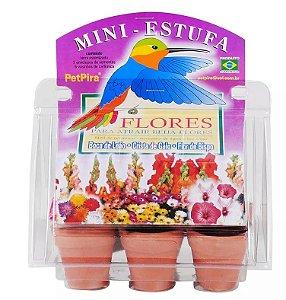 Mini estufa kit de aprendizado Flores - Boca de Leão - Crista de Galo - Flor de bispo