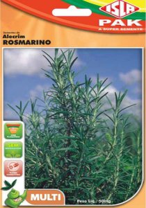 Alecrim / Rosmarino