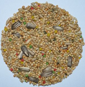 Grão natural para alimentação de Periquitos - Mistura de sementes 500g