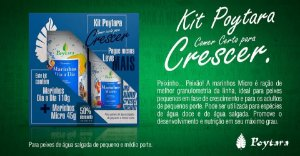 Kit Poytara Comer certo para crescer marinhos Dia a dia 110g + Marinhos Micro 45g
