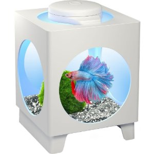 Tetra Betta Projector com luminária LED Multicor - Branca