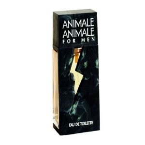 Perfume Masculino Animale Animale For Men – 100ml
