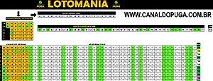 Planilha Lotomania - Esquema com Linhas de 7 Dezenas