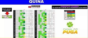 Planilha Quina - Esquema 12 Dezenas Com Garantia De Quadra