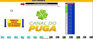 Planilha Lotomania - Esquema Com Redução De Duplas