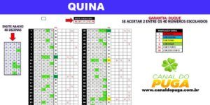 Planilha Quina - Esquema 40 Dezenas com Garantia