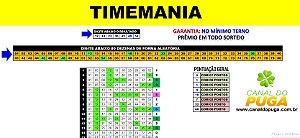 Planilha Timemania - 80 Dezenas com Terno Já Garantido