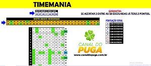 Planilha Timemania - 58 Dezenas com Fechamento Reduzido