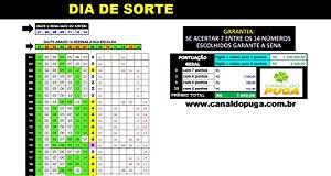 Planilha Dia de Sorte - Esquema com 14 Dezenas Fechando 100% Sena