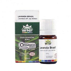 WNF - Óleo Essencial Lavanda Brasil - 10ml  (lavandula off. ssp dentata)