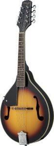 MANDOLIN STAGG M20