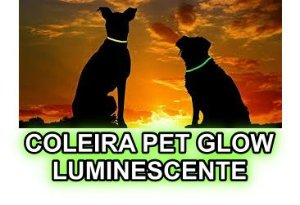 Coleira Pet Glow Corion p/ Cachorro Gato Brilha No Escuro Sem Bateria. + Segurança