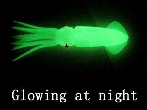 Pó Glow Corion 10gr * Pó Neon * Para fazer isca artificial, boia, vara Glow * Brilham No Escuro Sem Luz Negra*