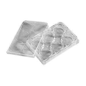 Microplaca Cultivo Celular 6 poços, tratada, caixa com 50 unidades, Mod. 3516 (CORNING)