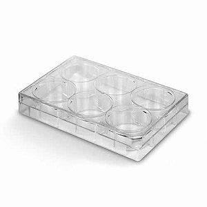 Placa para Cultivo celular em PS, 6 poços, fundo chato, borda elevada, com tampa, estéril, mod.: K12-006 (Kasvi)