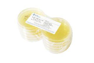Agar Triptico de soja (TSA) em Placa de Petri 90x15mm, Pacote com 10 placas, mod.: PA36 (Newprov)