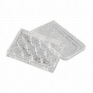 Microplaca Cultivo Celular, 12 poços, fundo chato, com tampa, estéril, tratamentoCellBIND®, caixa com 50 unidades. Mod. 3336 (Corning)