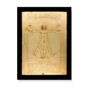 Quadro Decorativo Homem Vitruviano Da Vinci 1490