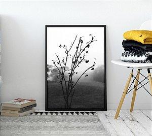 Quadro Ramo de Flores Black&White Minimalista
