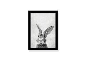 Quadro Rabbit Black And White