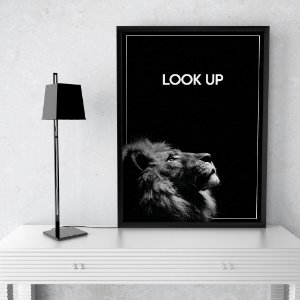 Quadro Leão Look Up