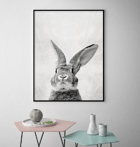 Quadro Rabbit Black And White