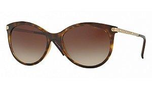 Óculos Grazi - 0GZ4018B Creative - Glossy Havana E435/57