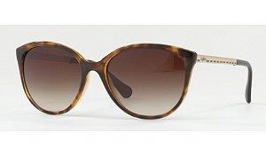 Óculos Kipling - 0KP4048 Basic - Glossy Havana E744/55