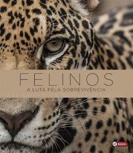 Felinos - A luta pela sobrevivência | Wild Cats - The struggle for survival