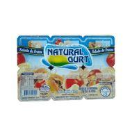Bebida Lactea Natural Gurt 600G Salada Frutas Com 6 Unidades
