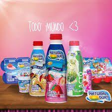 Bebida Lactea Natural Gurt 450G Morango