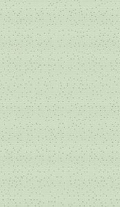 REV 33x57cm - 5780 cx2,5m² ROCHA FORTE