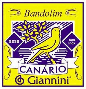 Encordoamento de Bandolim Canario GESB