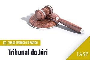 Curso Teórico e Prático sobre Tribunal do Júri - Não Associados