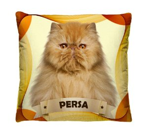 Almofada Decorativa Gato e Gatinhos