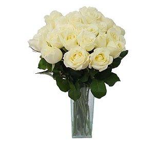 20 Rosas Brancas no Vidro