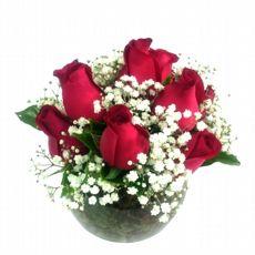 Aquário 10 Rosas Vermelhas