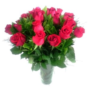 24 Rosas Vermelhas no Vaso