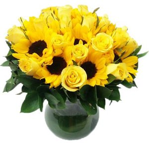 Luxuosos Girassóis e Rosas Amarelas