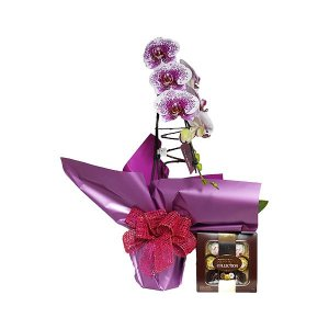 Orquídea Exótica com Ferrero Collection