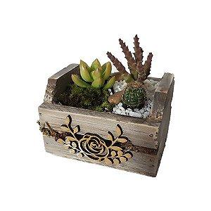 Mini Jardineira de Cactus e Suculentas