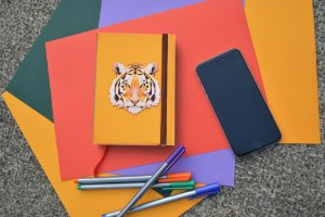 Sketchbook TIGRE