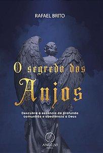 Livro - O Segredo dos Anjos