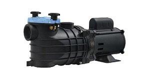 Bomba para Piscina Monofásica EKO 1 CV 127/220V Schneider Motobombas