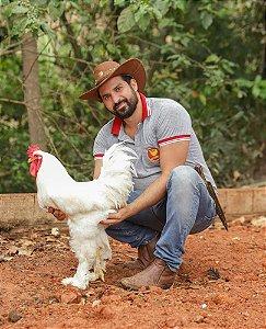 BRAHMA - OVOS FÉRTEIS (preço por ovo)