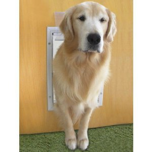 Porta de Passagem - Buddy Pet Door Grande
